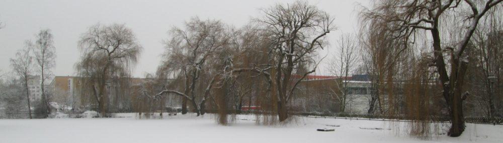 Knappteich – Naherholungsgebiet im Chemnitzer Yorckgebiet